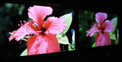 CES 2012 - Sony Crystal LED TV